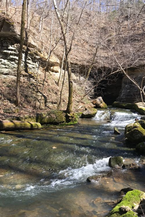 Stream Flowing from Donaldson Cave at Spring Mill State Park