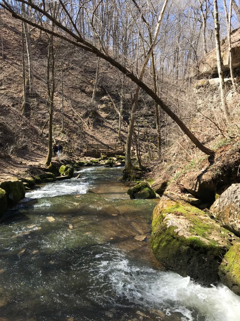 Stream Near Donaldson Cave at Spring Mill State Park